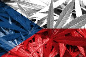Czech Republic: Radio CZ Interviews Canadian Sean Carney Working For Canadian Medical Cannabis Company Tilray In Europe
