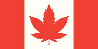 Canada: City of Saskatoon Standing Policy Committee on Planning, Development and Community Services voted against issuing business licences to marijuana dispensaries.