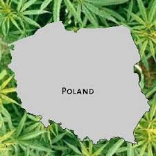 Poland: Medical Marijuana Bill Introduced