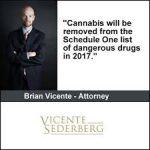 Colorado: BNA Profiles Cannabis Lawyer Brian Vincente