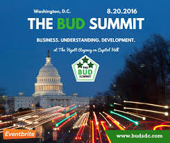 Washington DC: The BUD ( Business Understanding Development) Summit