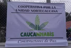 Columbia: New Cooperative Organisation To Produce Medical Marijuana