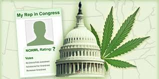 USA: NORML Publishes Its Annual Congressional Scorecard