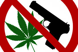 A Particularly American Issue: Federal Ban on Sale of Guns to Medical Marijuana Card Holders Doesn't Violate Second Amendment Says Federal Appeals Court