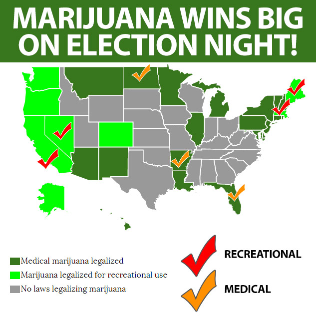 USA: Weedia Buzz Publishes Cannabis Ballot Results Infographic