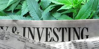 USA: Elections, Ballots, Investment, Stocks & Cannabis