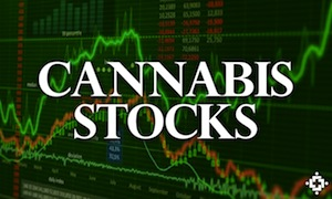 USA: Cannabis Stocks Rise On Ballot Results