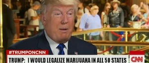 Ballots May Have Gone Through But What Will Trump Appointments Mean To Cannabis Industry In The USA?