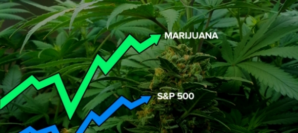 Forbes Says Election Was Tipping Point For Medical Cannabis Stocks In the U.S