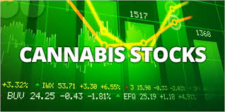 Marijuana Stocks.com Take A Snapshot Of Cannabis Stock Movement Since Inauguration
