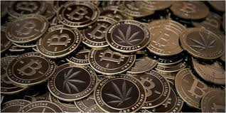 "CannaSOS Founder Launches ""Perkscoin – The 420 Digital Currency"""