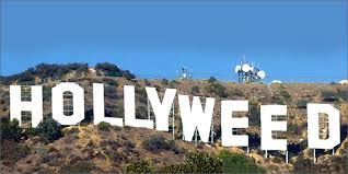 Another New Year's Day Story. Hollywood Now Hollyweed