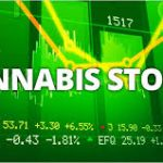 Op Ed: Marijuana Stocks Especially Cannabis-Biotechs are Capturing Wall Street's Attention in a Big Way