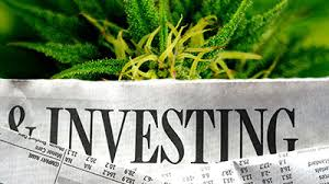 Investment & The Cannabis Sector