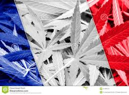 French Election Reveals Support For Cannabis Liberalization