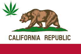 California: State Sanctuary Legislation Is The Big Talking Point At The Moment