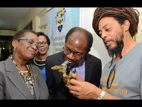 Jamaica: Ellen Campbell Grizzle associate professor, College of Health Sciences, University of Technology, Jamaica Pens Article On Developing Legal Medical Cannabis