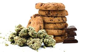 Cannabis Law Report – Site Update Information Passwords & Cookies Information