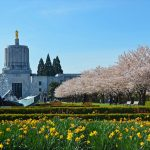 Oregon: Green Light Law Group Publish Summaries of all OR Cannabis Related Legislation From the Past Session