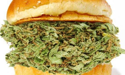 Sandwich To Hold Cannabis Meeting