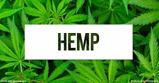Too Much Hemp Is Barely Enough – Roundup time: Press Releases, Vermont