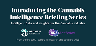 "Arcview Bundle Up Reports As  ""Cannabis Intelligence Briefing,"""