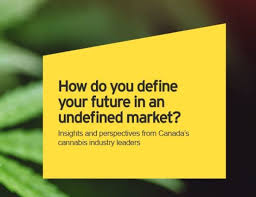 EY Publish Report On Developments Coming To Canadian Regulated Market Post Federal Legislation