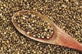 Report / Press Release: Hemp Protein market Global Industry Analysis and Forecast, 2016-2026