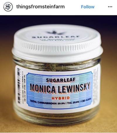 It's Still The Silly Season . Monica Lewinsky Cannabis Strain On The Shelves