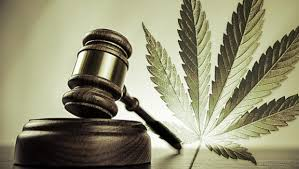 Article: Lawyers Walk Fine Line to Navigate State, Federal Cannabis Laws