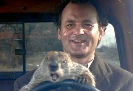 Groundhog Day: Another Delayed Appropriations Bill – Cannabis Protections Remain