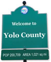 California's Yolo County Considers Selling Seized Illegal Cannabis Grows