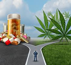 The Pharma-Cannabis World Is Here