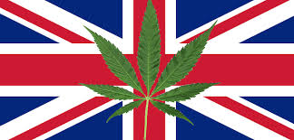 UN Report Highlights UK as Govt World's Largest Producer & Exporter of Medical Cannabis
