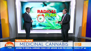 Australian Medical Cannabis Proponent Pulled Up For Not Declaring Financial Interests In TV Segment