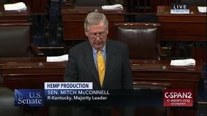 McConnell Introduces Hemp Legislation In The Senate