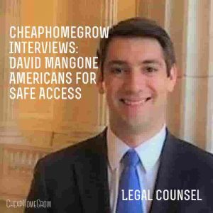 Interview: David Mangone: Americans For Safe Access Legal Counsel
