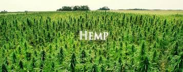 Hemp Wrap: Arizona, Kansas, Oregon