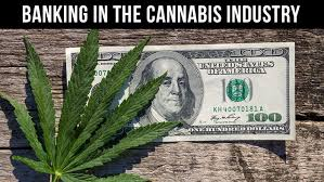 Fox Rothschild Lawyers Publish Article on Cannabis & Banking. What Defines Illegal Activity?
