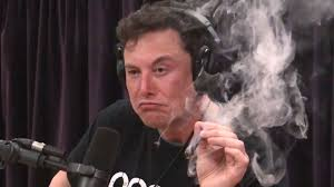 Elon Musk , Smokes A Spliff, Doesn't Inhale ..World Goes Crazy