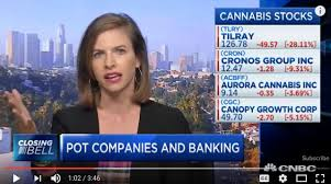 Attorney Lauren Estevez on CNBC today discussing cannabis stocks