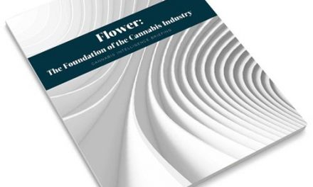 Arcview Publish New Report: Flower: The Foundation of the Cannabis Industry