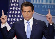 The Mooch Says Trump Will Push For A Regulated Cannabis Sector After Mid Terms