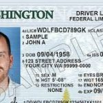 Part I – Cannabis Security: ID's or Technology