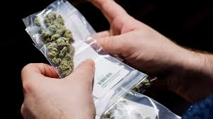 "San Francisco Superior Court Says ""police, judges and law enforcement officials are shielded from federal prosecution when they return less than an ounce (28 grams) of marijuana to released suspects who ask to get back their seized property"""