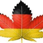 Stop-start tender process hindering German hopes of domestic cannabis success