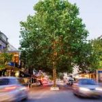 Australia: WA's first medicinal cannabis-specific clinic opens