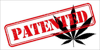 Reuters Article: Patents on pot? U.S. lawsuit puts cannabis claims to the test