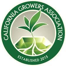 California Growers Assoc Leaked Doc Confirms Debts Of $US267K