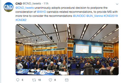 More Delays On Cannabis Review From UN Commission On Narcotic Drugs. We May Have To Wait Until December For A Decision